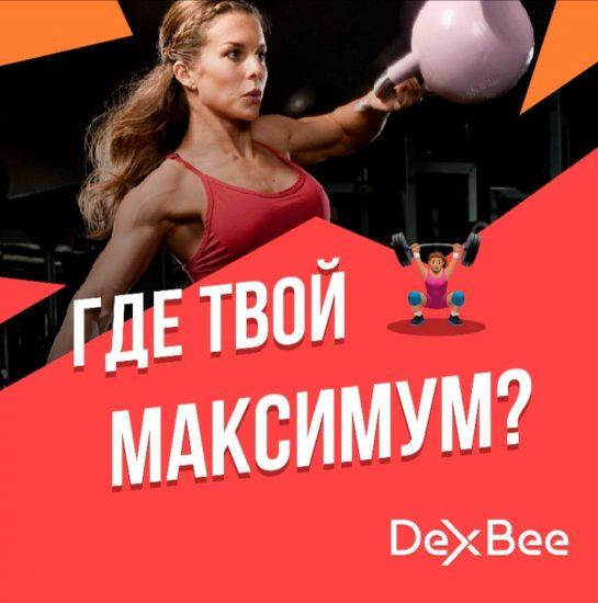 Система контроля тренировочной нагрузки DexBee
